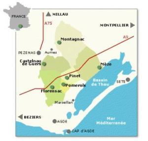 picpoul-de-pinet-map-bassin-de-thau-languedoc
